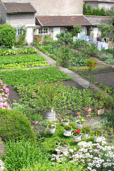Backyard Kitchen Garden French Backyard Kitchen Garden. Building Your Own Kitchen Cabinets. Adding Crown Molding To Kitchen Cabinets. Paint Colors For Kitchen With Oak Cabinets. How To Polish Kitchen Cabinets. Kitchen Cabinet Space Savers. Wire Shelves For Kitchen Cabinets. Where To Place Kitchen Cabinet Knobs. Kitchen Cabinets Factory Direct